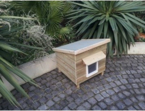 Small L1 Lodge Cathouse