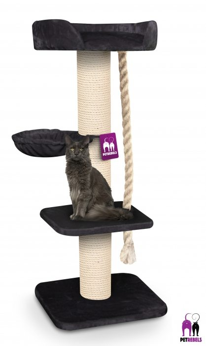 The Rebels Maine Coon Scratching Lounge 173cm
